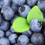breakfast_blueberries