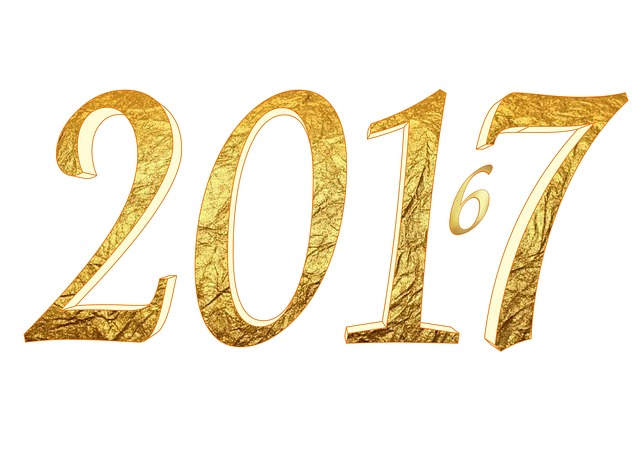2017 outlook