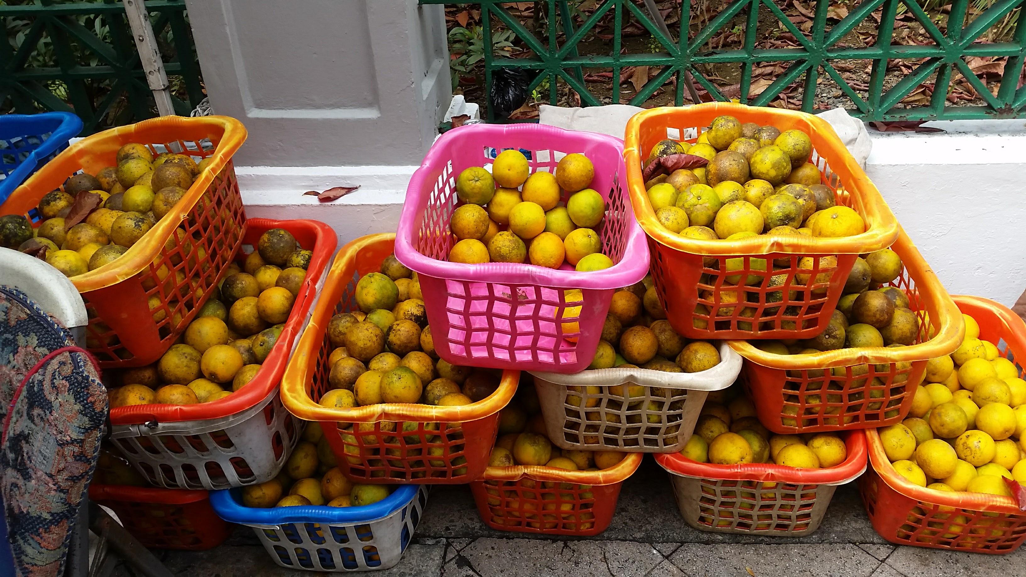 breakfast_oranges