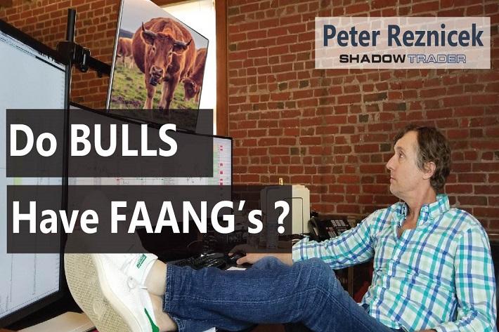 Do Bulls Have FAANG's?   ShadowTrader Video Weekly 04.28.19